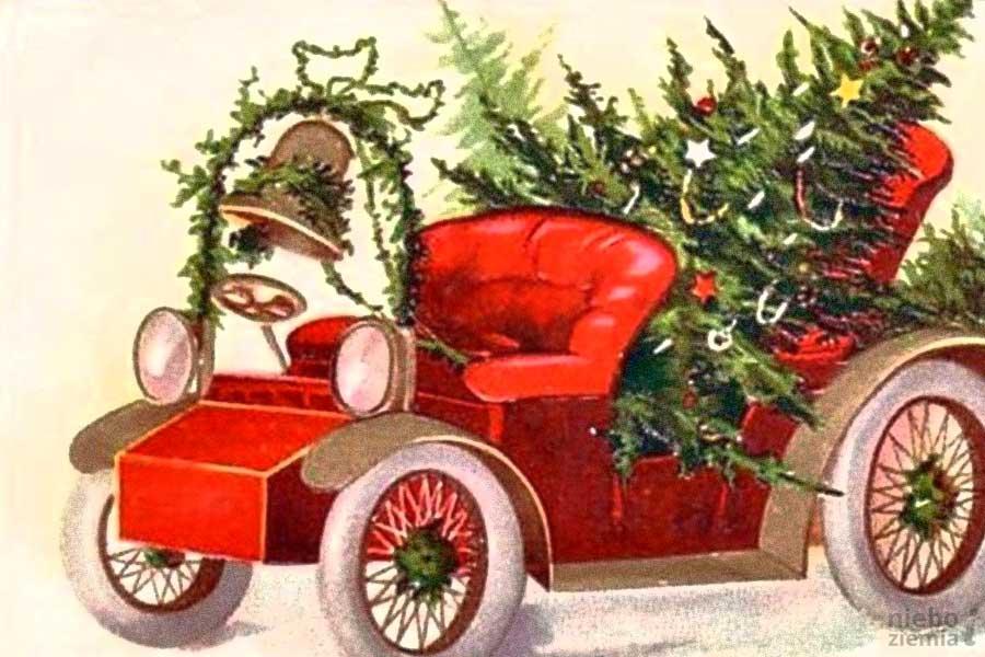 Kto pierwszy przyniósł drzewko do domu?